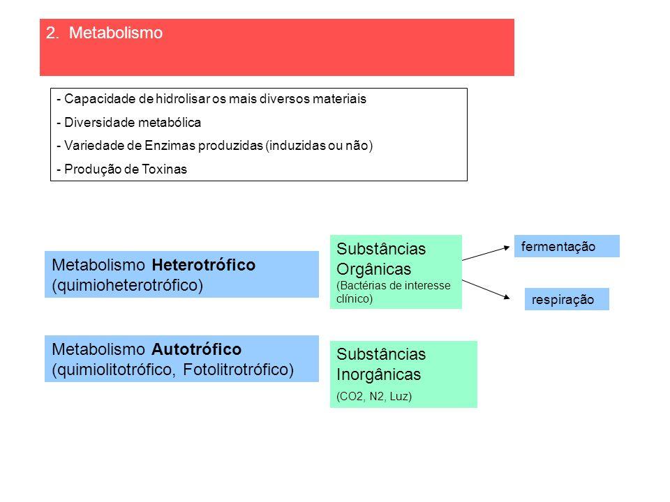 Substâncias Orgânicas Metabolismo Heterotrófico (quimioheterotrófico)