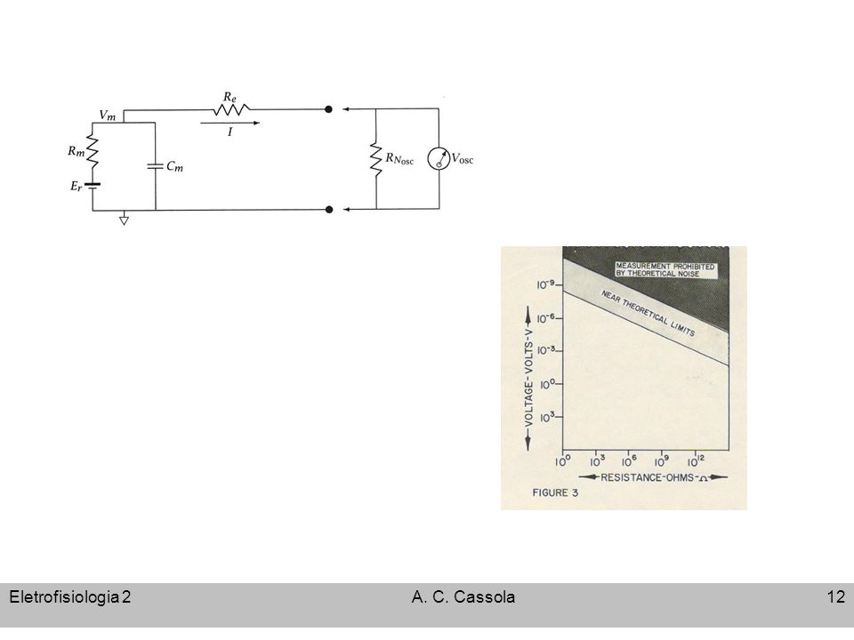 Eletrofisiologia 2 A. C. Cassola