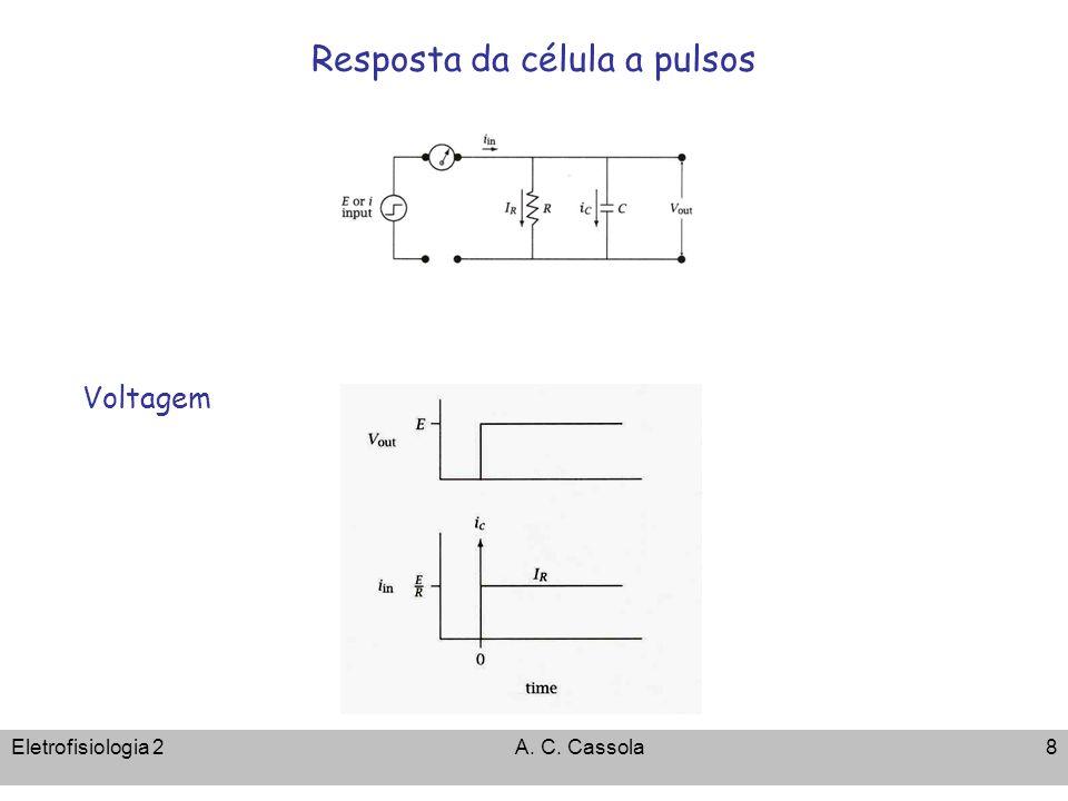 Resposta da célula a pulsos