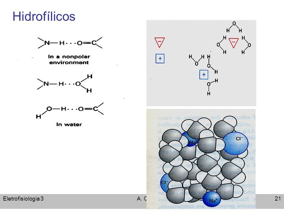 Hidrofílicos Eletrofisiologia 3 A. C. Cassola