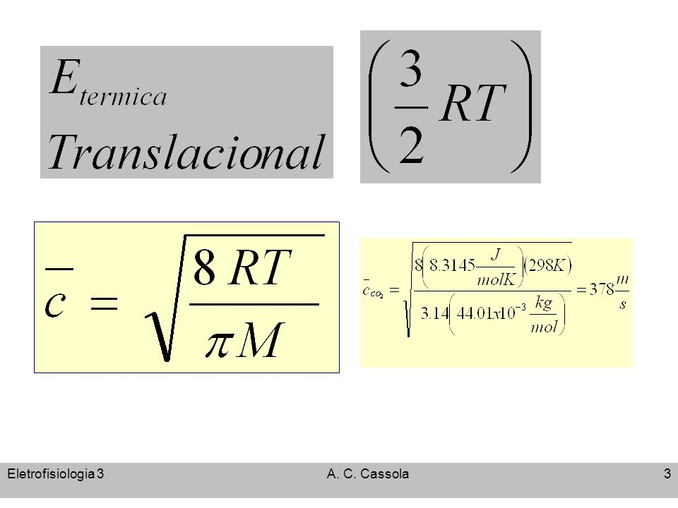 Eletrofisiologia 3 A. C. Cassola