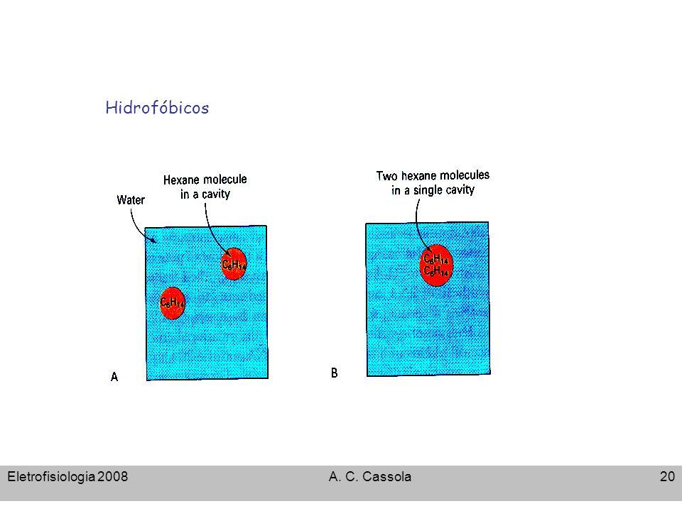 Hidrofóbicos Eletrofisiologia 2008 A. C. Cassola