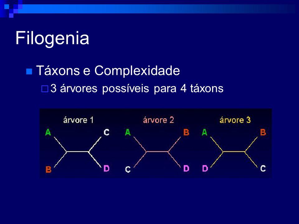 Filogenia Táxons e Complexidade 3 árvores possíveis para 4 táxons