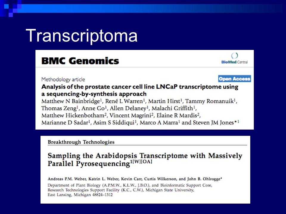 Transcriptoma