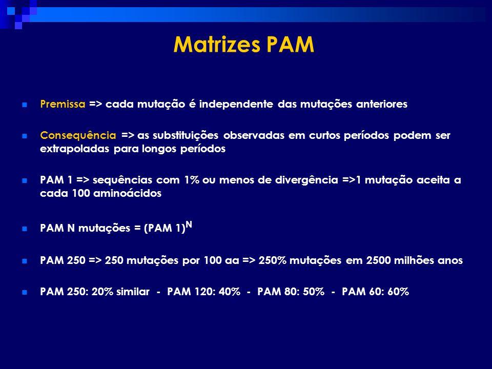 Matrizes PAM Premissa => cada mutação é independente das mutações anteriores.