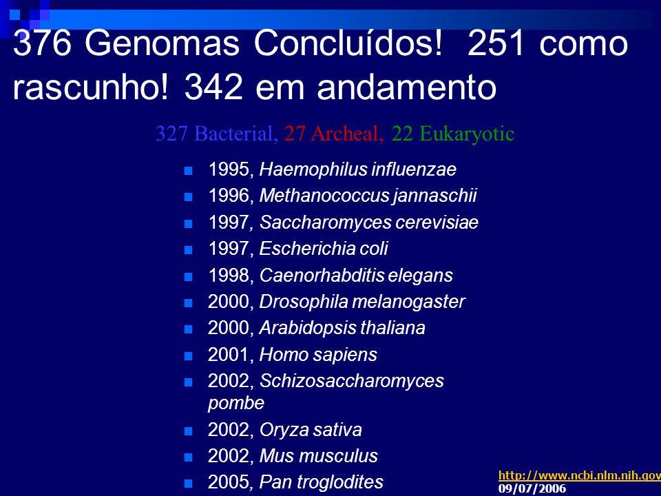 376 Genomas Concluídos! 251 como rascunho! 342 em andamento