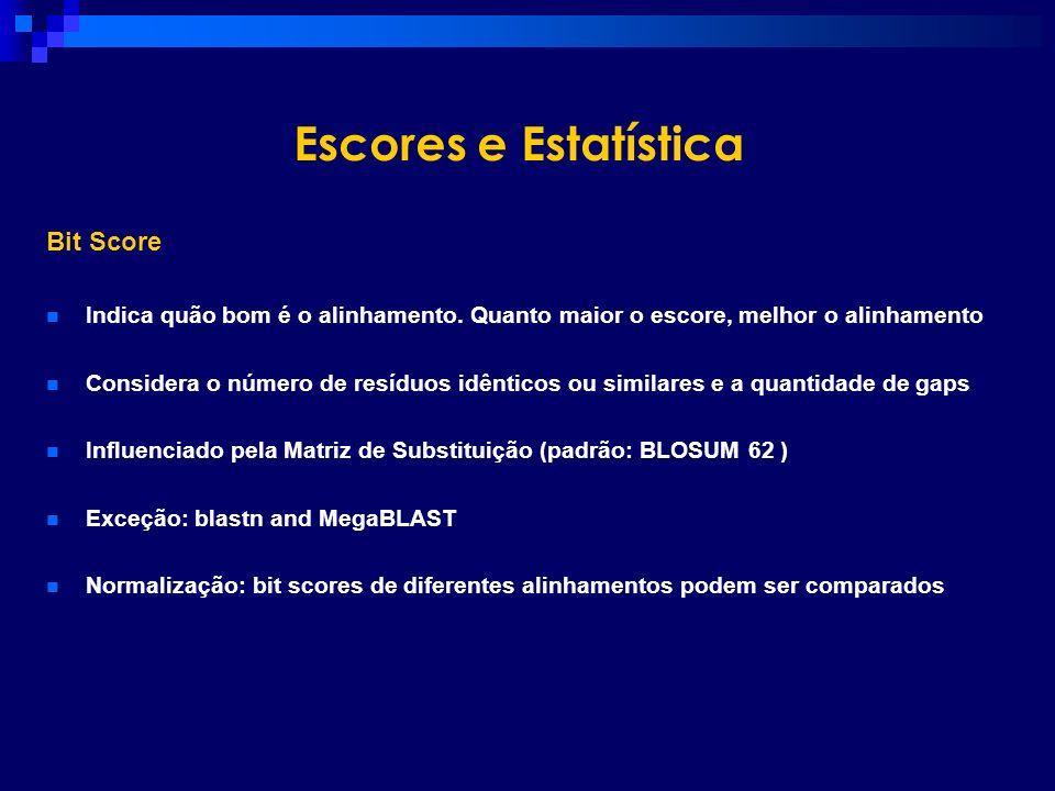 Escores e Estatística Bit Score