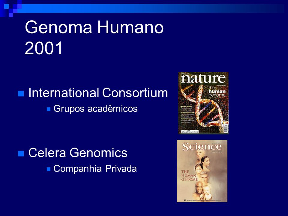 Genoma Humano 2001 International Consortium Celera Genomics