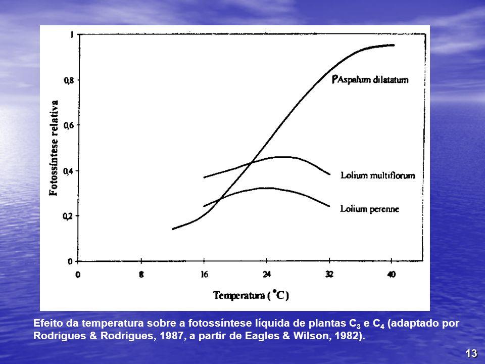 Efeito da temperatura sobre a fotossíntese líquida de plantas C3 e C4 (adaptado por Rodrigues & Rodrigues, 1987, a partir de Eagles & Wilson, 1982).