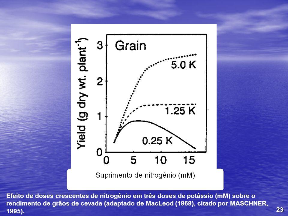 Efeito de doses crescentes de nitrogênio em três doses de potássio (mM) sobre o rendimento de grãos de cevada (adaptado de MacLeod (1969), citado por MASCHNER, 1995).