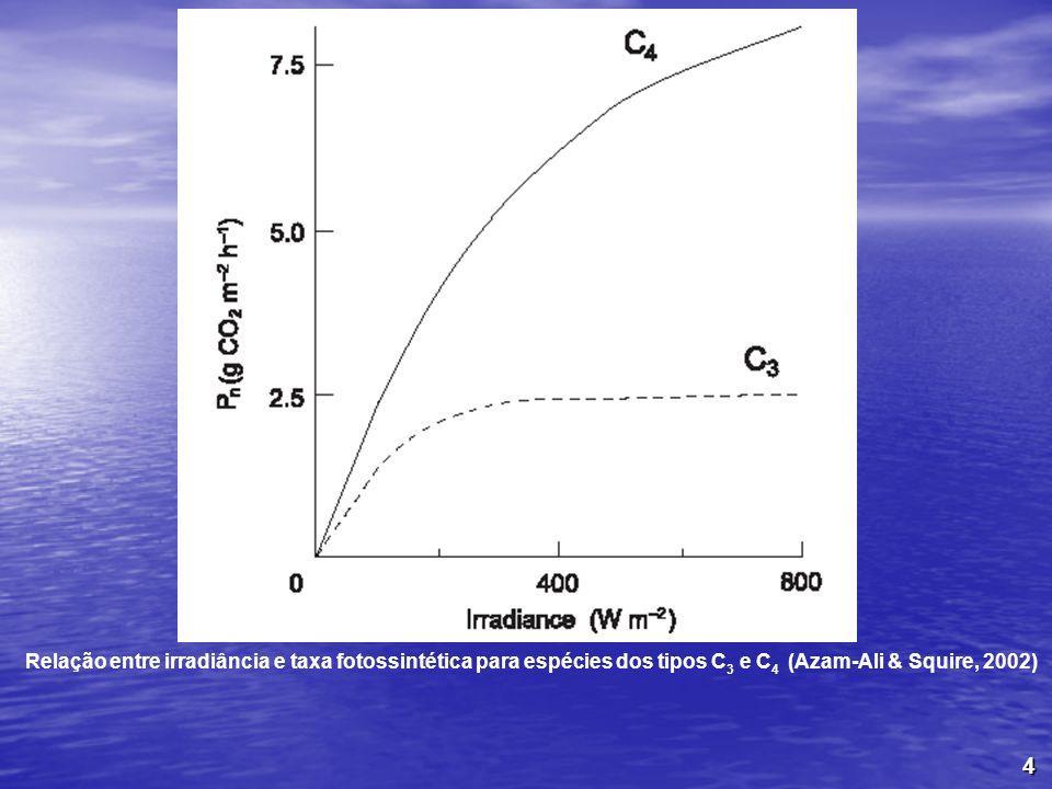 Relação entre irradiância e taxa fotossintética para espécies dos tipos C3 e C4 (Azam-Ali & Squire, 2002)