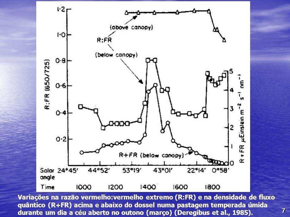 Variações na razão vermelho:vermelho extremo (R:FR) e na densidade de fluxo quântico (R+FR) acima e abaixo do dossel numa pastagem temperada úmida durante um dia a céu aberto no outono (março) (Deregibus et al., 1985).