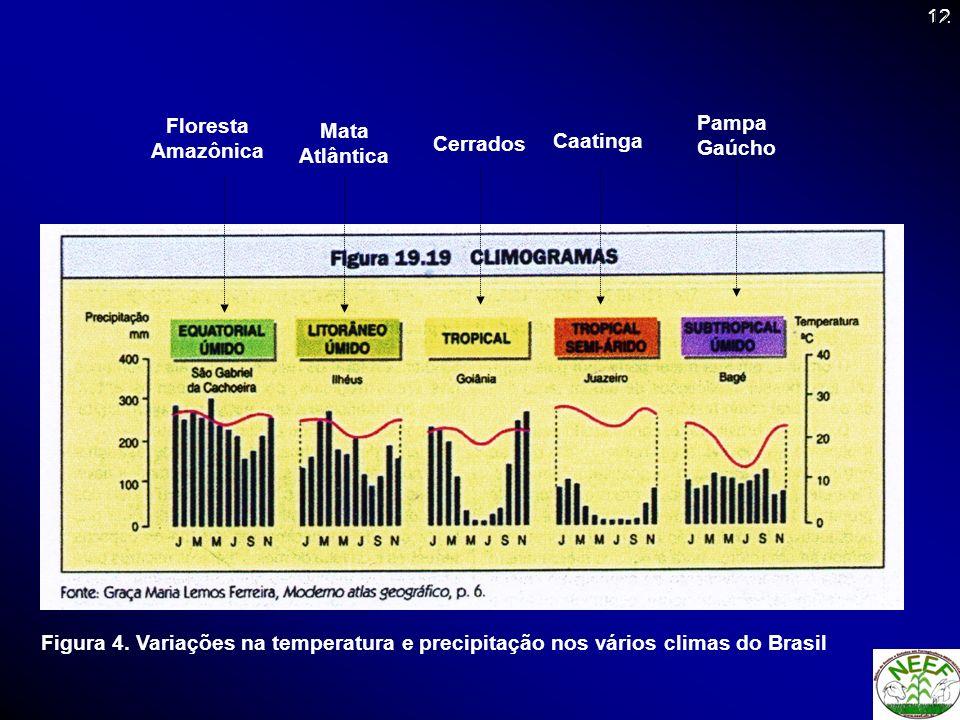 Floresta Amazônica Mata Atlântica