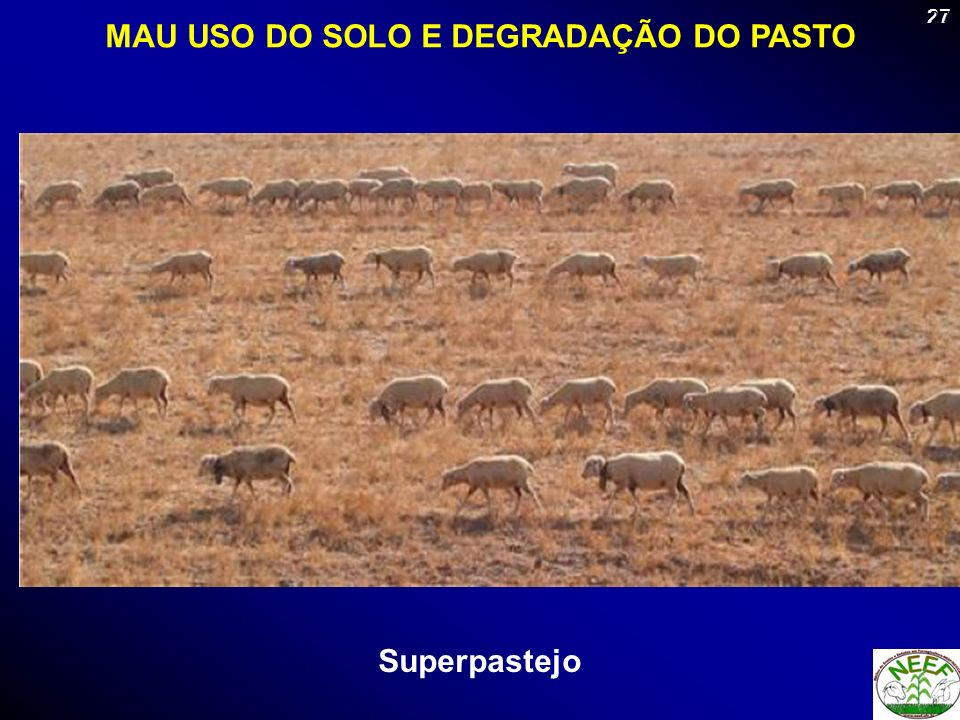 MAU USO DO SOLO E DEGRADAÇÃO DO PASTO