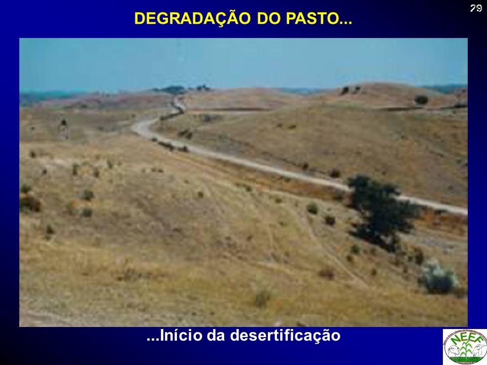 ...Início da desertificação