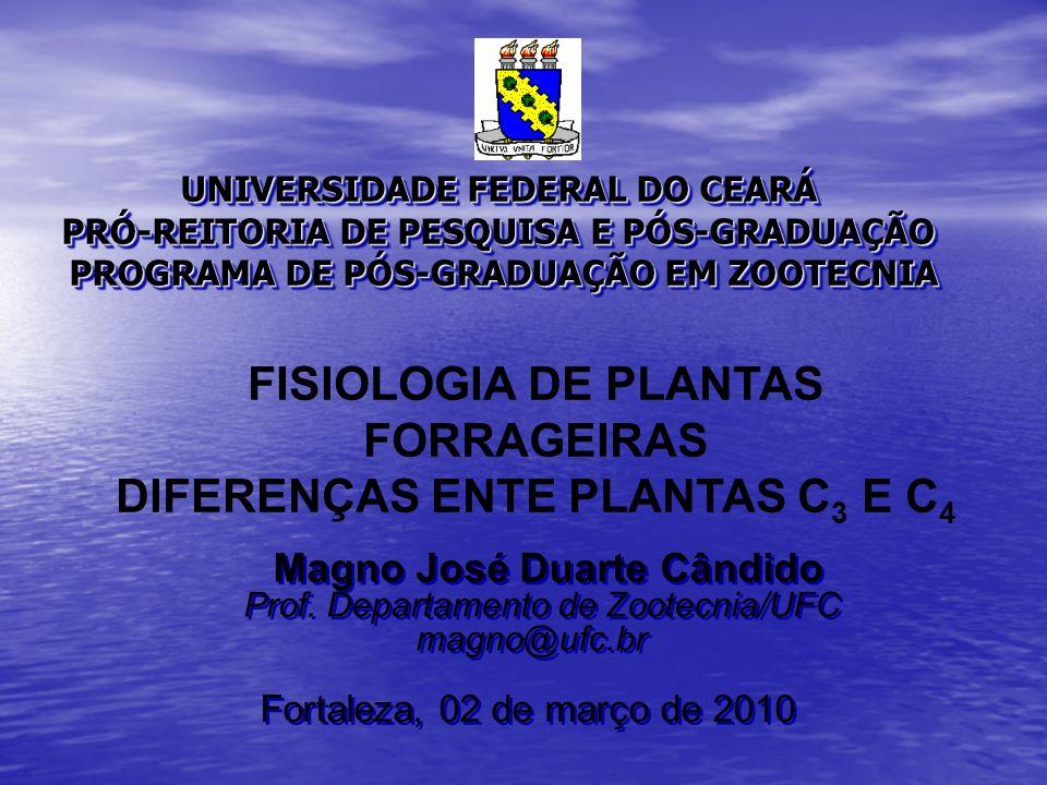 FISIOLOGIA DE PLANTAS FORRAGEIRAS DIFERENÇAS ENTE PLANTAS C3 E C4