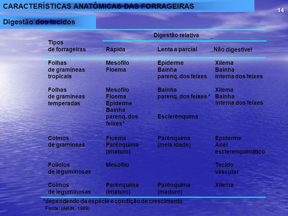 CARACTERÍSTICAS ANATÔMICAS DAS FORRAGEIRAS