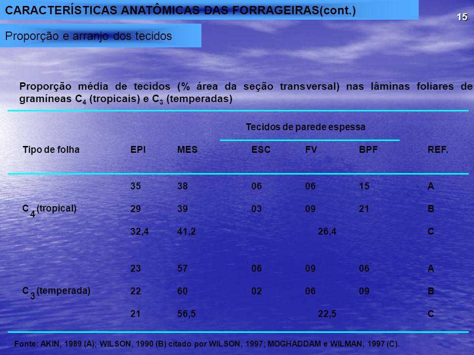 CARACTERÍSTICAS ANATÔMICAS DAS FORRAGEIRAS(cont.)