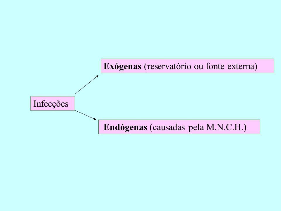 Exógenas (reservatório ou fonte externa)