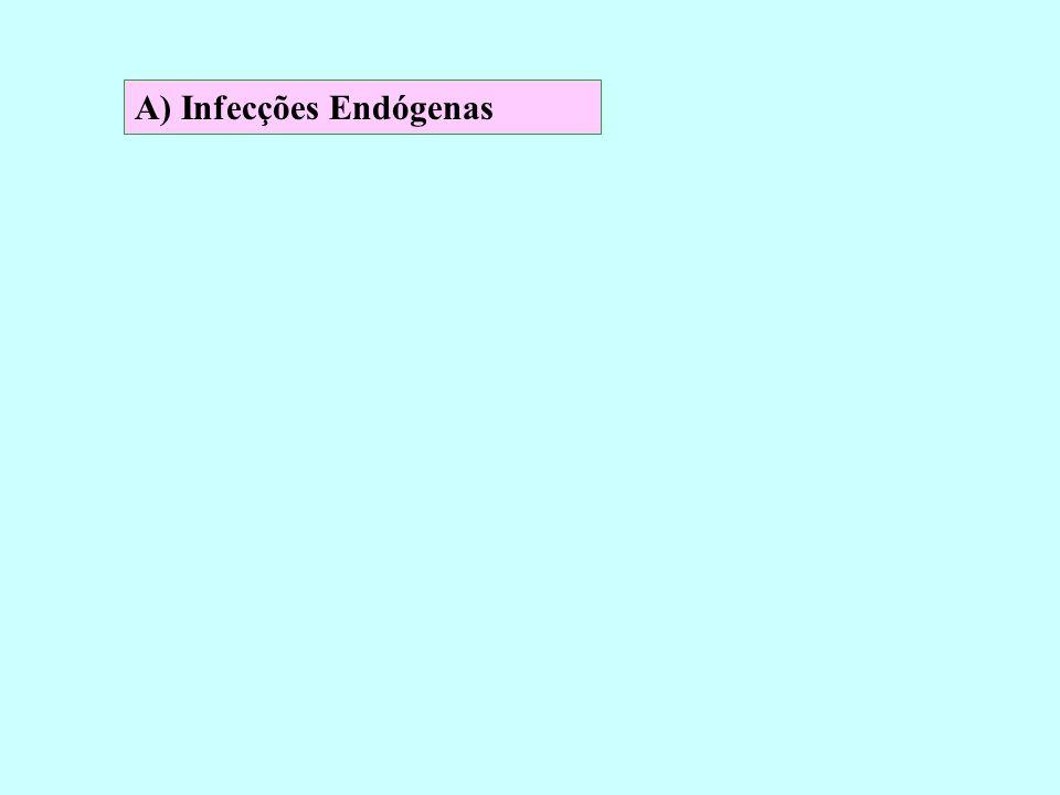 A) Infecções Endógenas