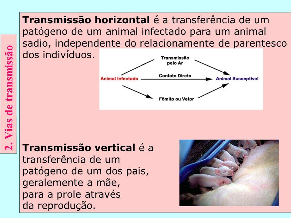 Transmissão horizontal é a transferência de um patógeno de um animal infectado para um animal sadio, independente do relacionamente de parentesco dos indivíduos.