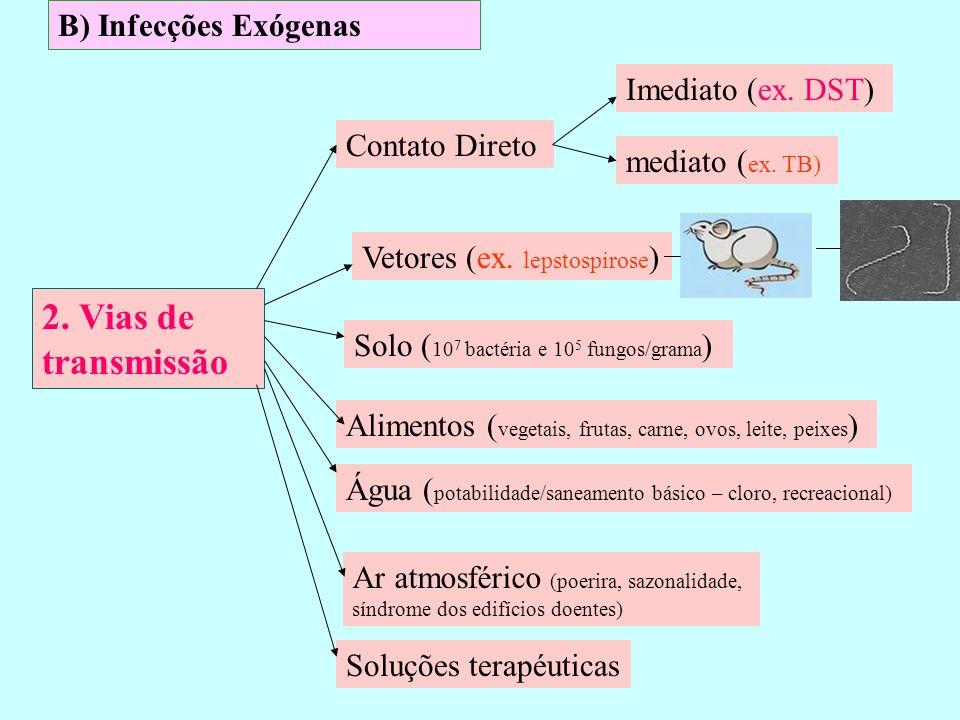 2. Vias de transmissão B) Infecções Exógenas Imediato (ex. DST)