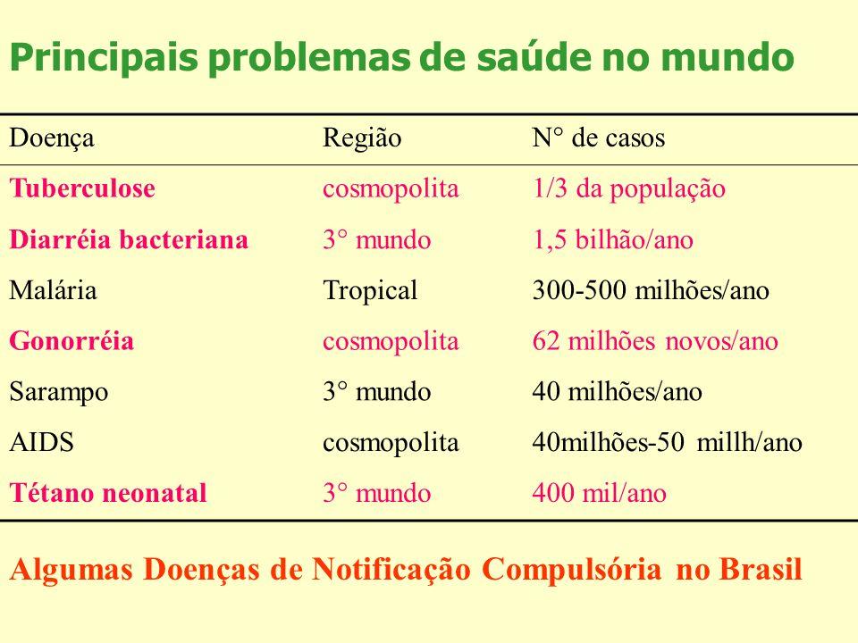 Principais problemas de saúde no mundo