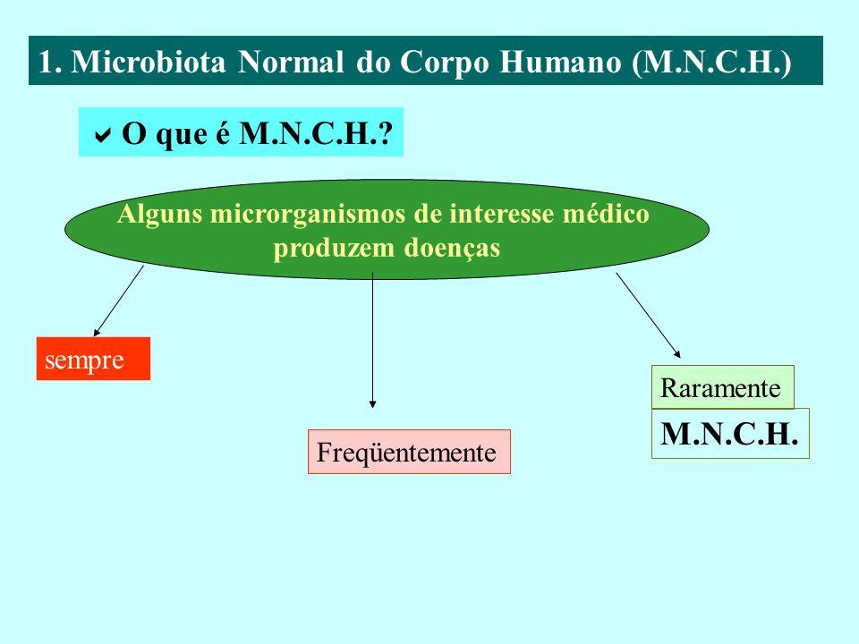 Alguns microrganismos de interesse médico
