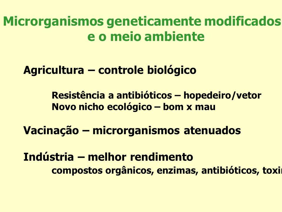Microrganismos geneticamente modificados e o meio ambiente