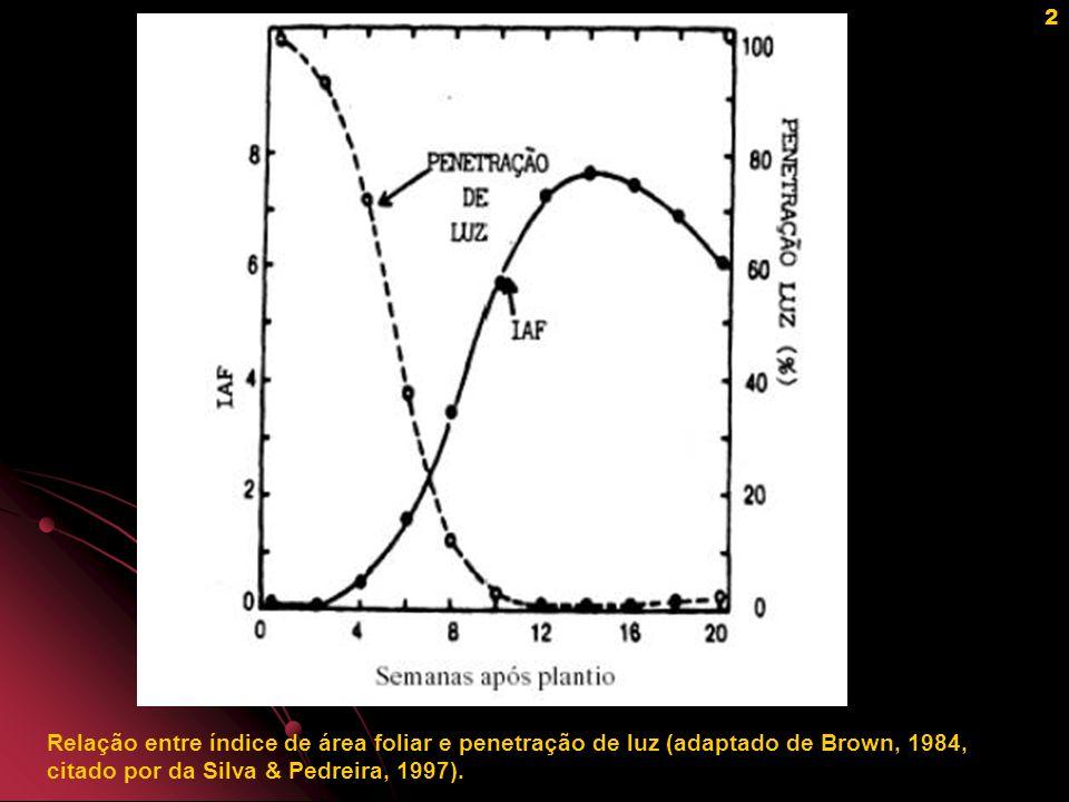 Relação entre índice de área foliar e penetração de luz (adaptado de Brown, 1984, citado por da Silva & Pedreira, 1997).