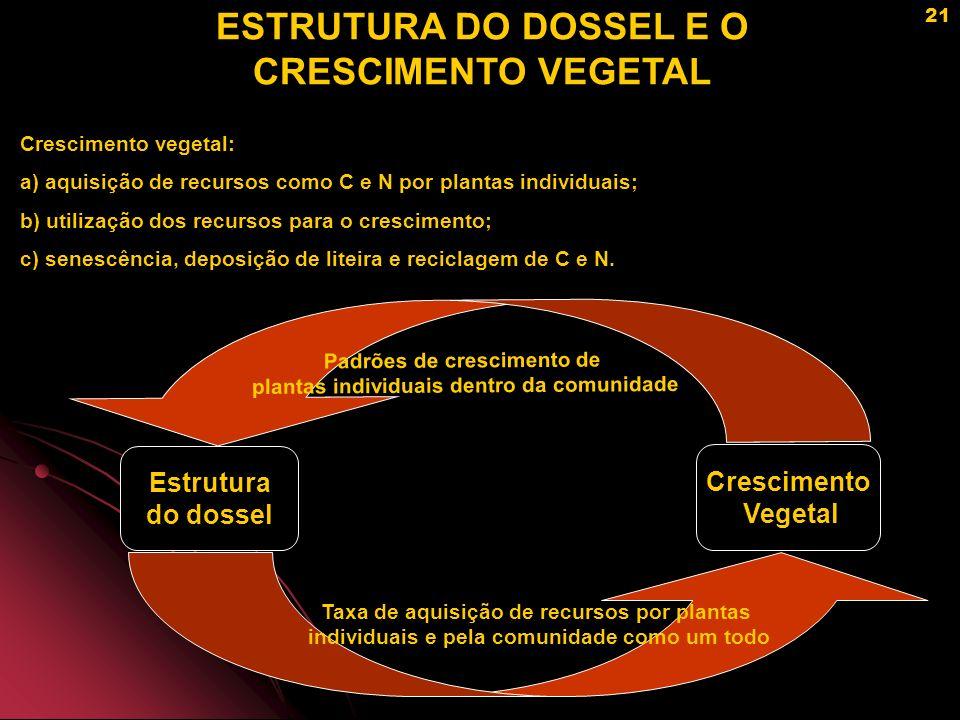 ESTRUTURA DO DOSSEL E O CRESCIMENTO VEGETAL