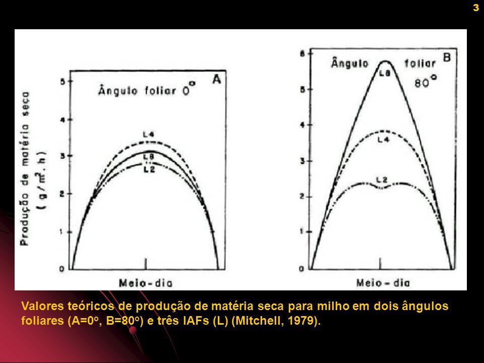 Valores teóricos de produção de matéria seca para milho em dois ângulos foliares (A=0o, B=80o) e três IAFs (L) (Mitchell, 1979).
