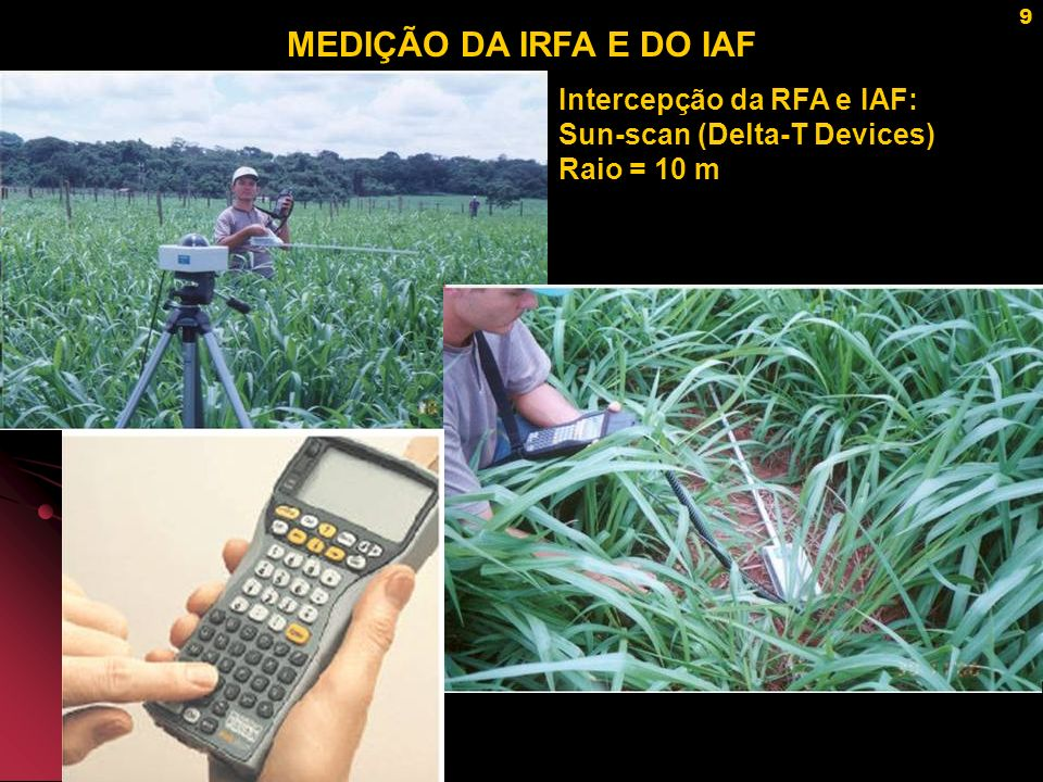 MEDIÇÃO DA IRFA E DO IAF Intercepção da RFA e IAF: