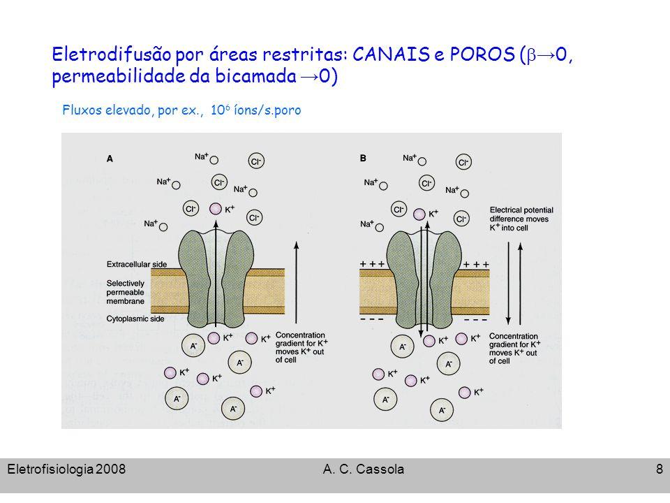 Eletrodifusão por áreas restritas: CANAIS e POROS (b→0, permeabilidade da bicamada →0)