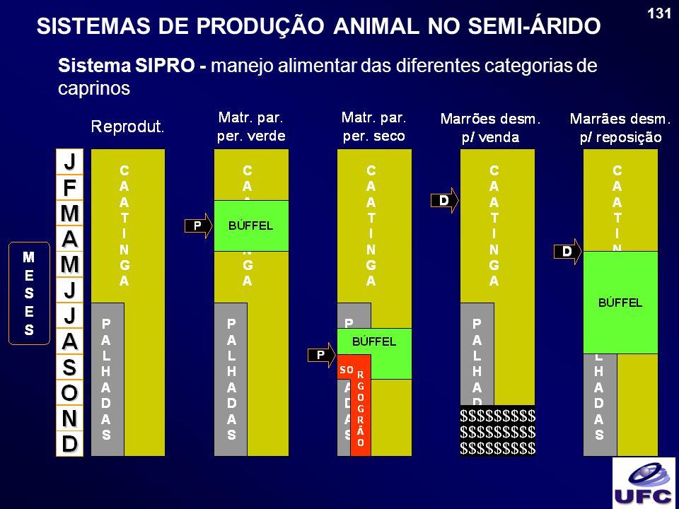 SISTEMAS DE PRODUÇÃO ANIMAL NO SEMI-ÁRIDO