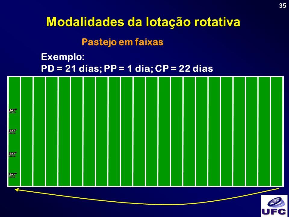 Modalidades da lotação rotativa
