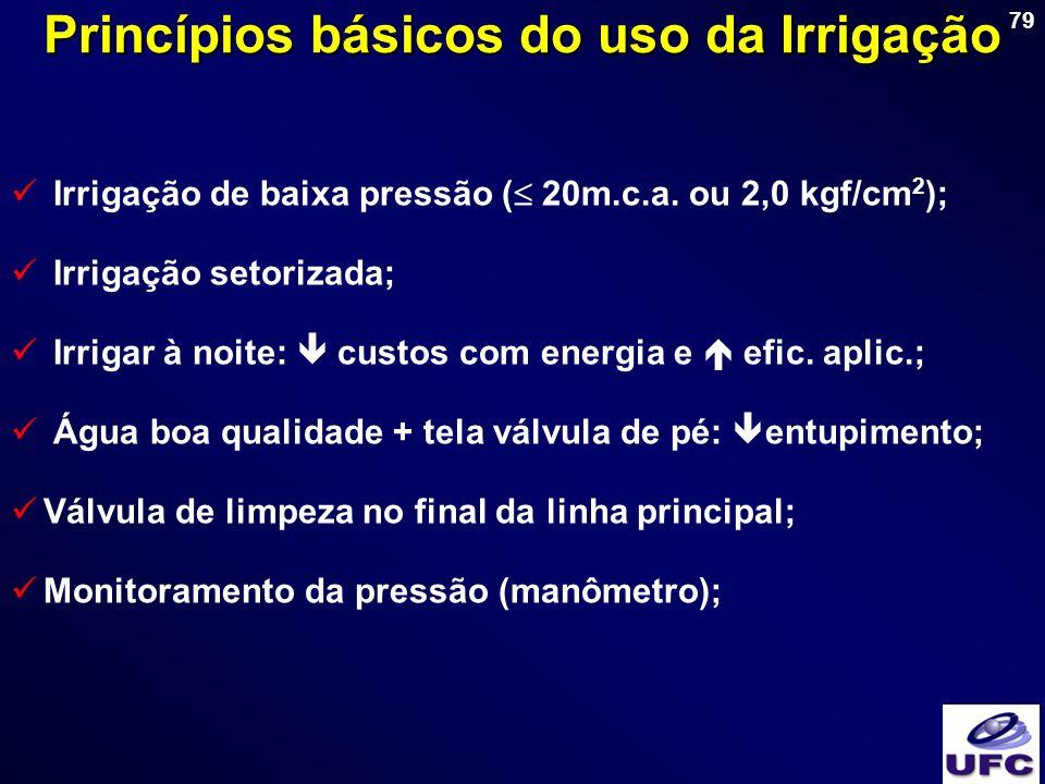 Princípios básicos do uso da Irrigação