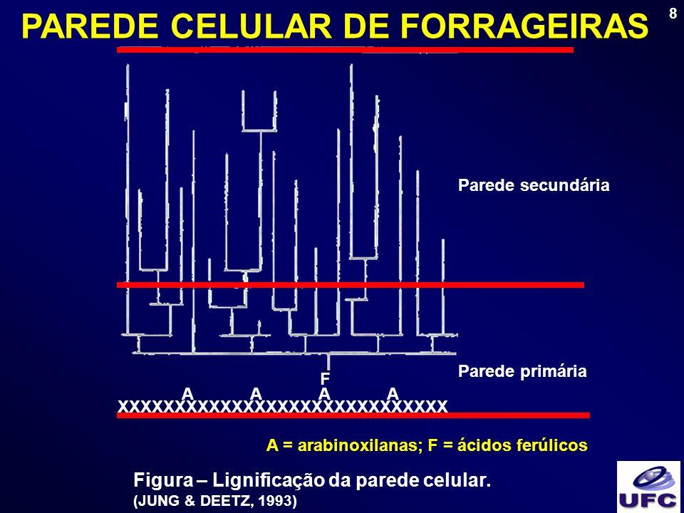 PAREDE CELULAR DE FORRAGEIRAS A = arabinoxilanas; F = ácidos ferúlicos