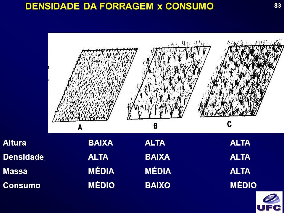 DENSIDADE DA FORRAGEM x CONSUMO