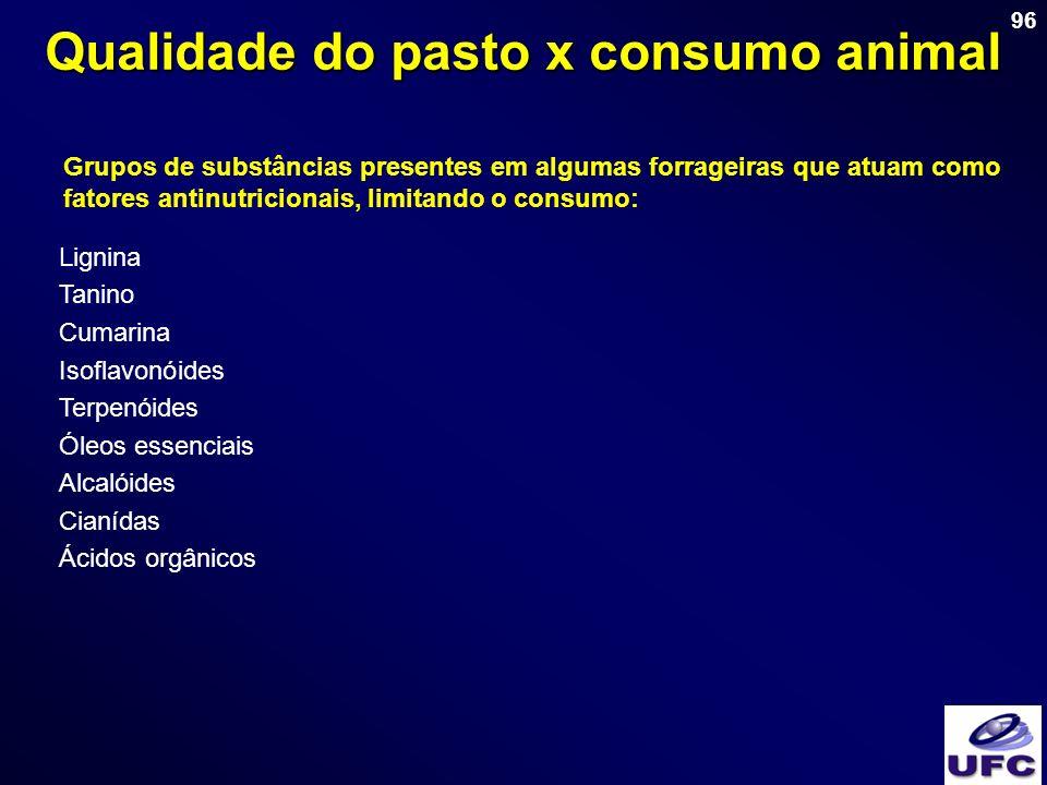 Qualidade do pasto x consumo animal