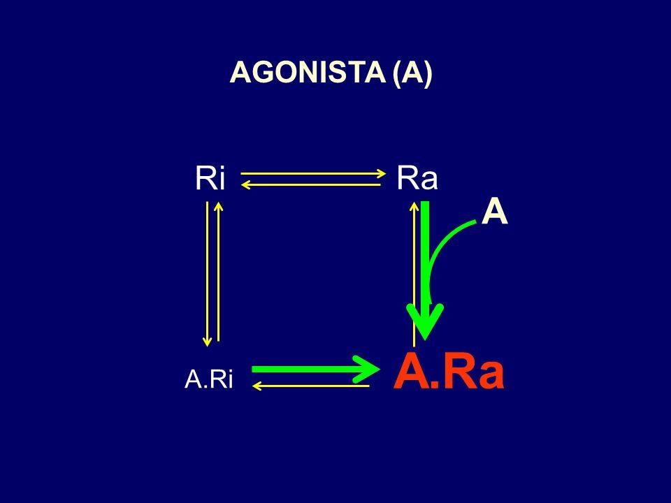 AGONISTA (A) Ri Ra A A.Ra A.Ri