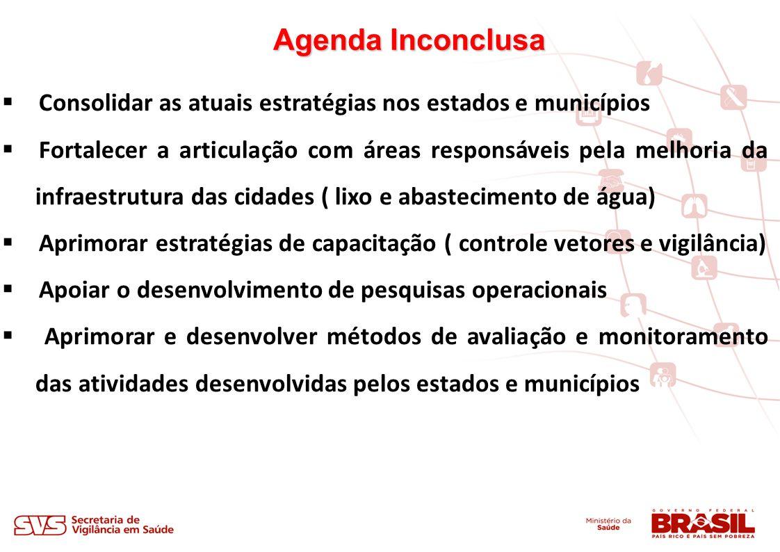 Agenda Inconclusa Consolidar as atuais estratégias nos estados e municípios.