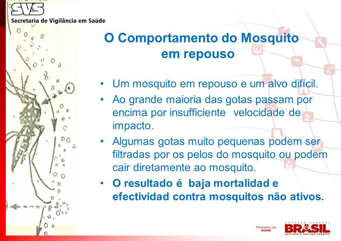 O Comportamento do Mosquito em repouso