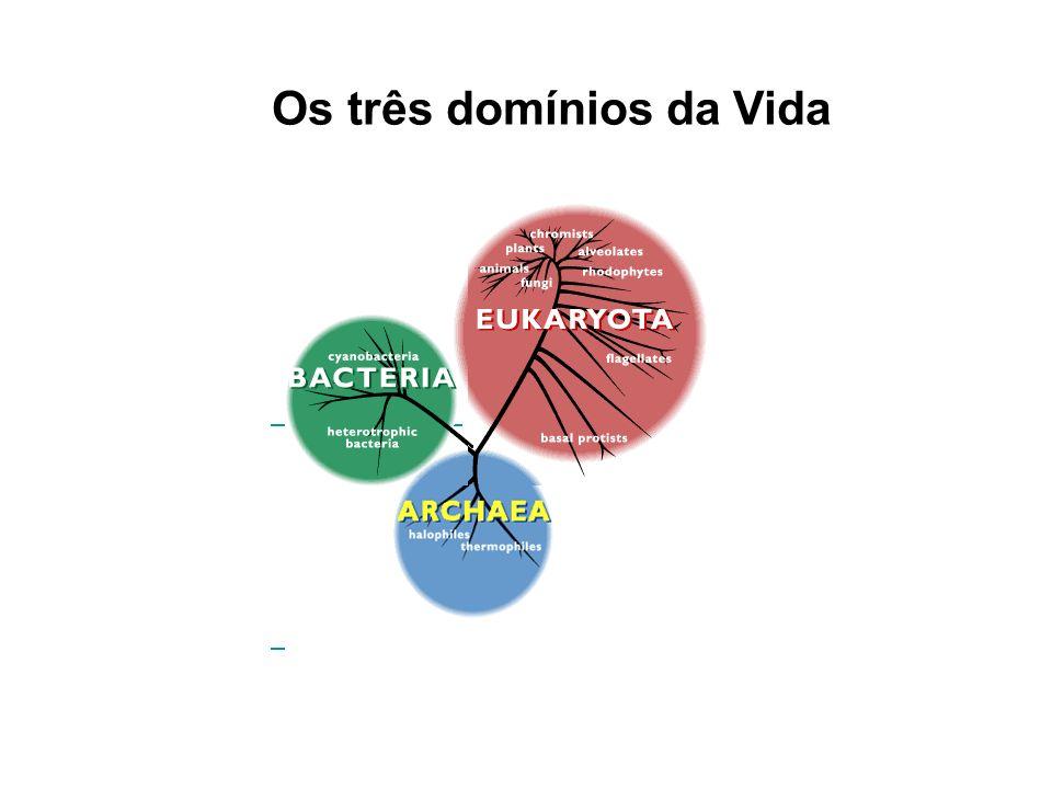 Os três domínios da Vida