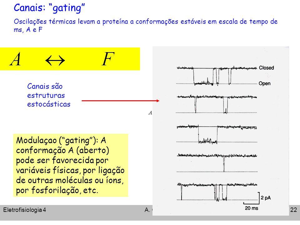 Canais: gating Oscilações térmicas levam a proteína a conformações estáveis em escala de tempo de ms, A e F.