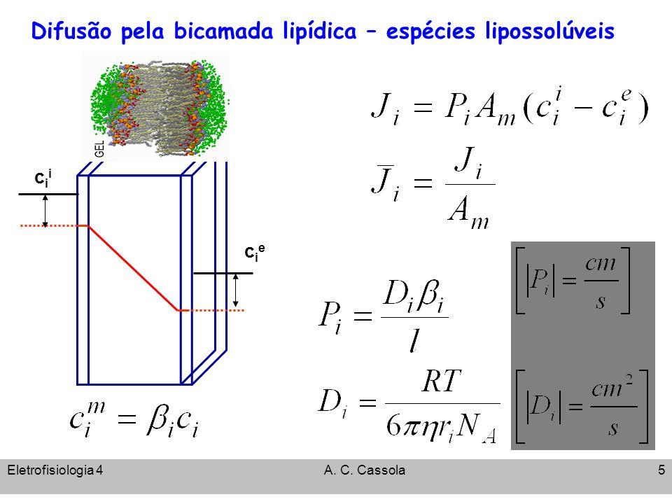 Difusão pela bicamada lipídica – espécies lipossolúveis