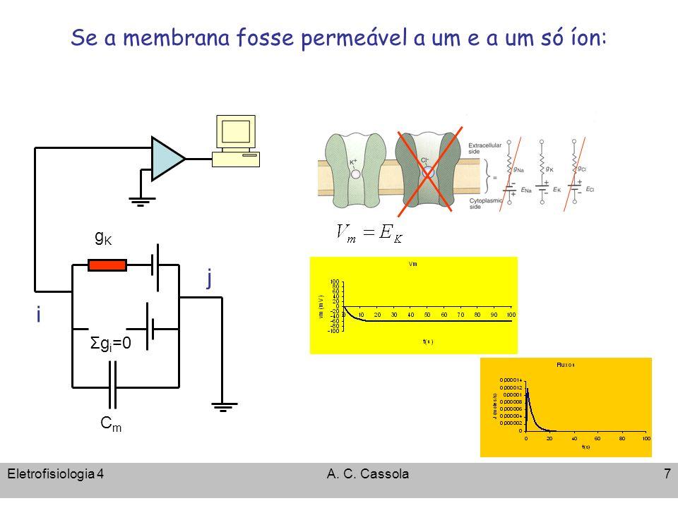 Se a membrana fosse permeável a um e a um só íon: