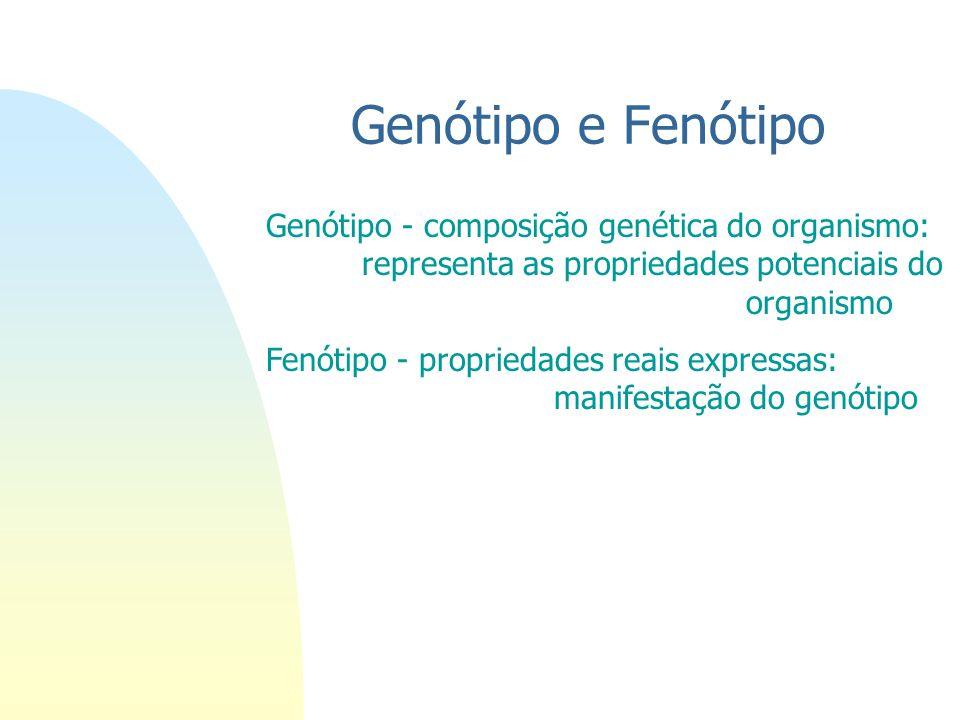 Genótipo e Fenótipo Genótipo - composição genética do organismo: representa as propriedades potenciais do organismo.