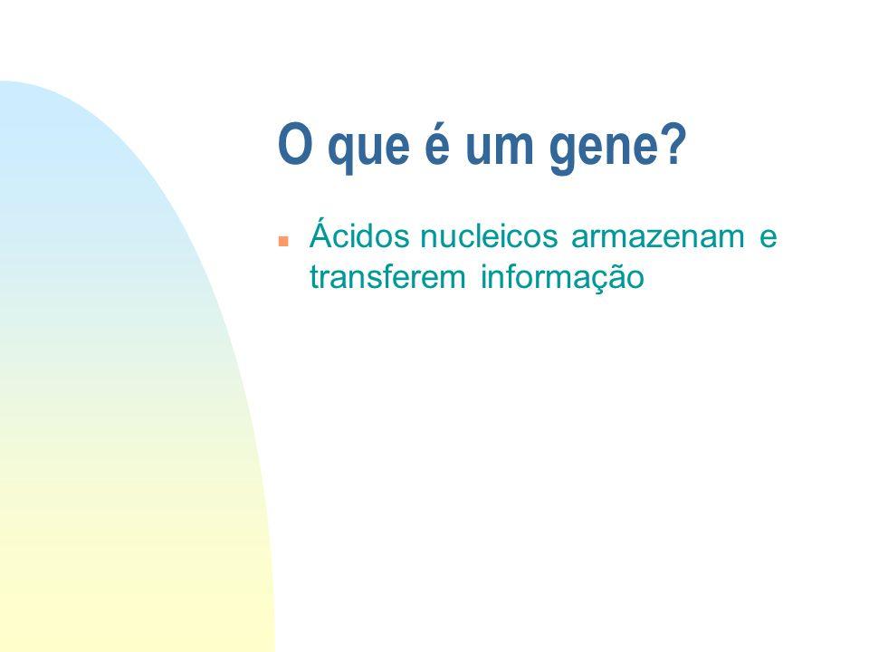 O que é um gene Ácidos nucleicos armazenam e transferem informação