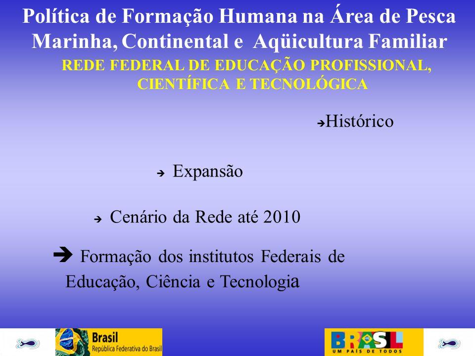 REDE FEDERAL DE EDUCAÇÃO PROFISSIONAL, CIENTÍFICA E TECNOLÓGICA